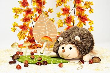 Picture for category Autumn
