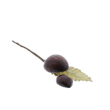 2 kastanjes met blad