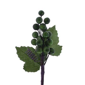 Fruit 1850 druiventros groen