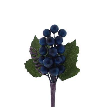 Fruit 1850 druiventros donker blauw