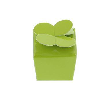 Doos vlindersluiting 1 praline groen