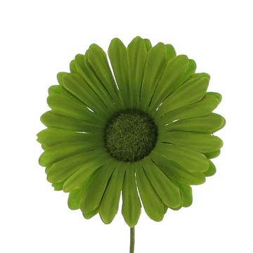 Germini GM groen