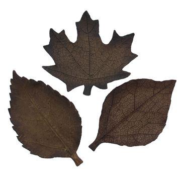 Herfstblad schaal