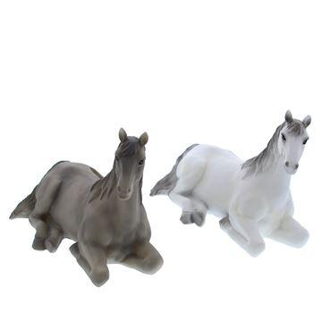 Paard Falco spaarpot