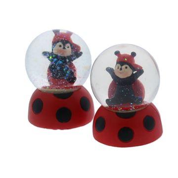 Happy ladybug waterbal KM