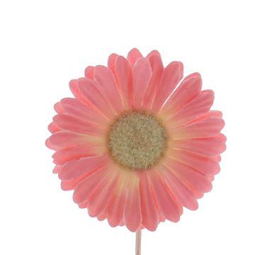 Germini KM roze