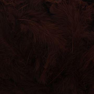 Pluimen bruin            10808