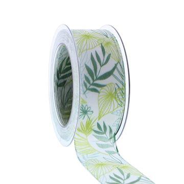 Lint San Salvador 40mmx20m wit-groen kleur 01