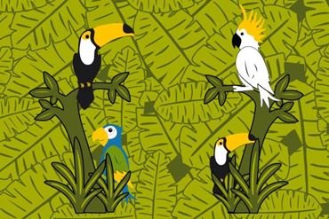 Image de la catégorie Birds Exotica