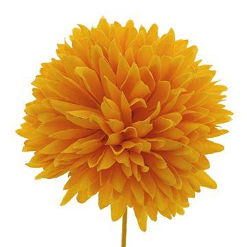 Dahlia GM donker geel