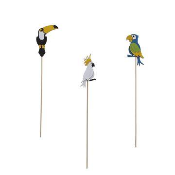 Birds Exotica op stick