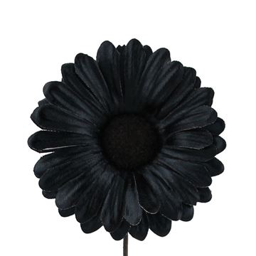 Germini Shiny GM zwart