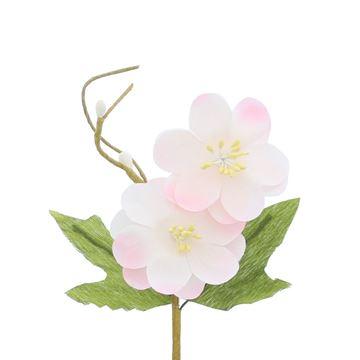 Lentebloesem Springtime 2 bloemen licht roze