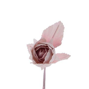 Rozeknop + blad licht roze