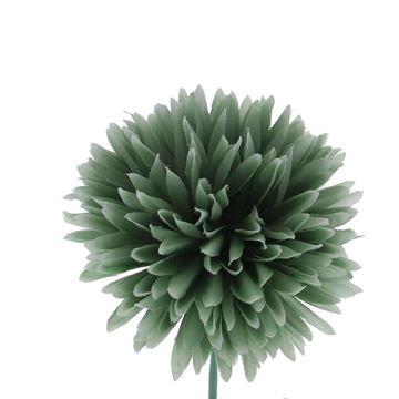 Dahlia GM smokey green