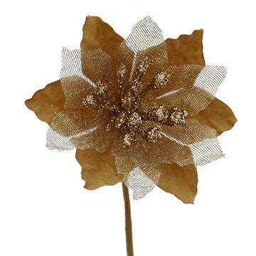 Poinsettia KM goud